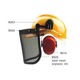 Safety Helmet TR953 Manufacturer
