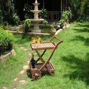 Promotional Garden Trolley from Vietnam