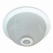 Ceiling Light Manufacturer