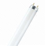 Fluorescent Lamp from Hong Kong SAR