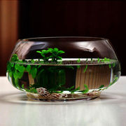 Glass Fish Tank from China (mainland)