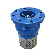 Foot Valve from China (mainland)