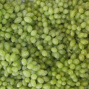 Green Grape from China (mainland)