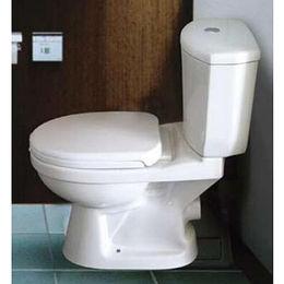 Economic Model Wash Down Dual Flush P-trap Two-piece Toilet