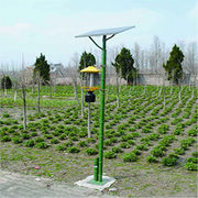 Solar Lamp from China (mainland)