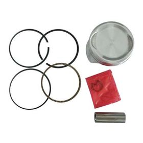 Piston and Piston Ring from China (mainland)