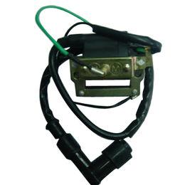Auto Ignition Coil Manufacturer