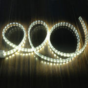 12V Warm White LED Rope Light from China (mainland)
