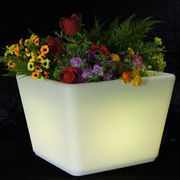 LED store outdoor indoor illumination planter from China (mainland)