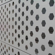 Perforated/cladding panel/aluminum curtain wall from China (mainland)