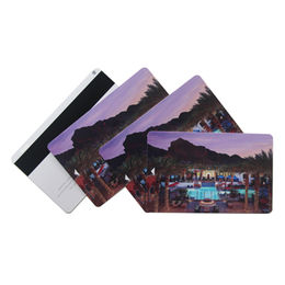 Plastic Magnetic Card from China (mainland)