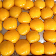 Canned Yellow Peach from China (mainland)