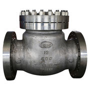 Cryogenic Check Valve Manufacturer