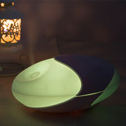 China Ultrasonic Aroma Humidifier