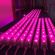 14W T8 LED light, integrated plug, for greenhouse plants, agricultural cultivation, hydroponics from China (mainland)