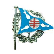 Custom flag pin from China (mainland)