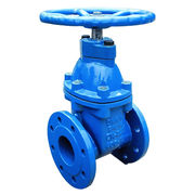 Ductile Iron Gate Valve from China (mainland)