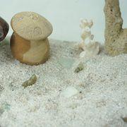 Hainan white sand from China (mainland)