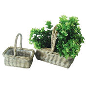 Wicker Planter from China (mainland)