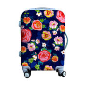Trolley Luggage from China (mainland)
