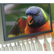 """Taiwan 27"""" SDI and Video LCD Monitor"""