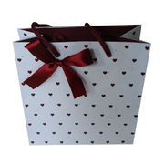 shopping Paper Bag from China (mainland)