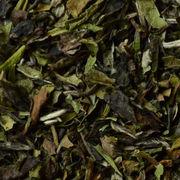 Organic Paimudan White Tea Manufacturer