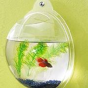 Wall mounted acrylic fish bowl from China (mainland)