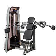 Shoulder Press Gym Equipment from China (mainland)