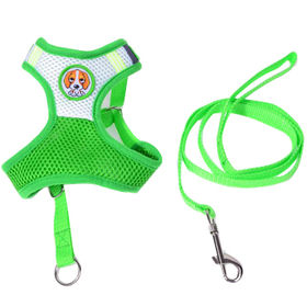 Pet Mesh Harness and Leash from China (mainland)