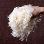Goose Feathers Manufacturer