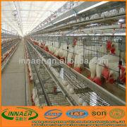 China Egg Laying Hens suppliers, Egg Laying Hens