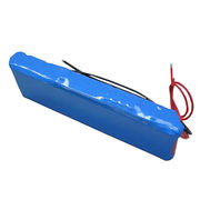 36V/8.8Ah Built-in E-bike Battery from China (mainland)
