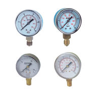 Gas Pressure Gauge from China (mainland)