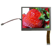 LCD Display from China (mainland)