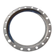 Ductile Iron Backup Flange from China (mainland)