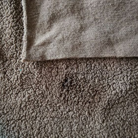 One sided brushed thick sherpa fleece Manufacturer