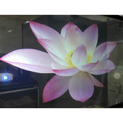3D Transparent Holographic Screen Film from China (mainland)