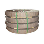 Stainless Steel Strips from China (mainland)