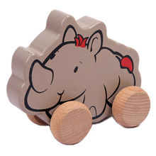Wooden pull and push toys