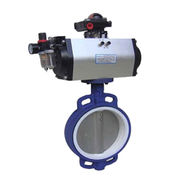 Teflon Seated Wafer Butterfly Valve from China (mainland)