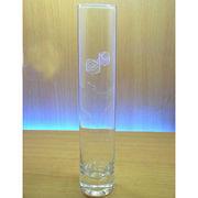 Straight glass vase from China (mainland)