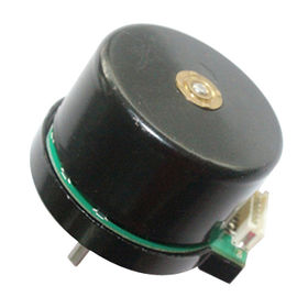 DC Brushless Motor from China (mainland)