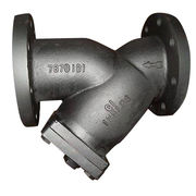 Y-strainer from China (mainland)