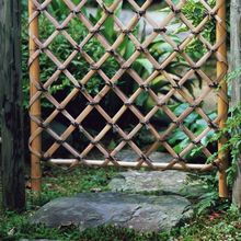 Speckled bamboo fence from China (mainland)