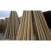 Moso bamboo pole from China (mainland)