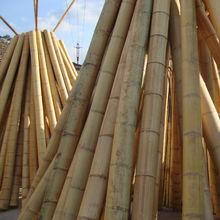 Bamboo pole from China (mainland)