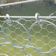 China hexagonal wire mesh supplier from China (mainland)