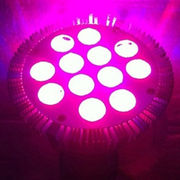 LED Growing Light from China (mainland)