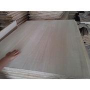 Solid paulownia wood from China (mainland)